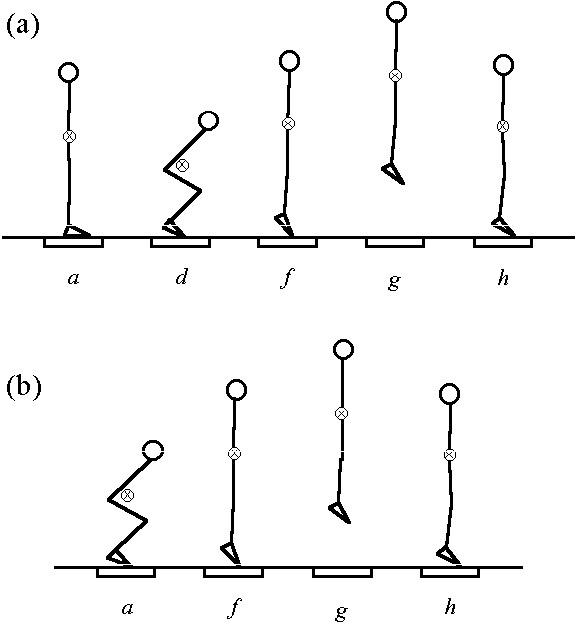 countermovement jump vs squat jump