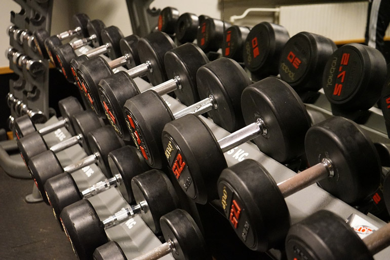 dumbbells are placed on racks