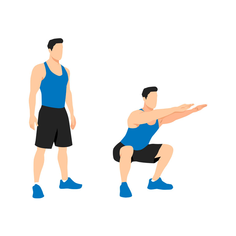how to Bodyweight Squat chart