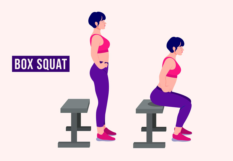 how to box squat chart