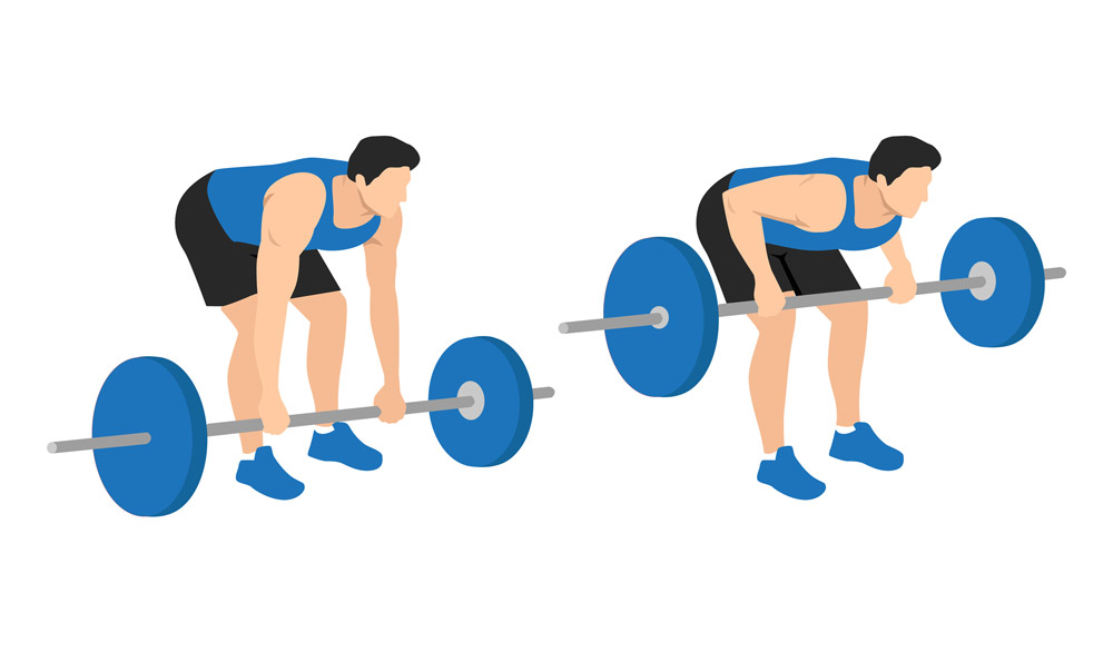 how to do barbell rows chart