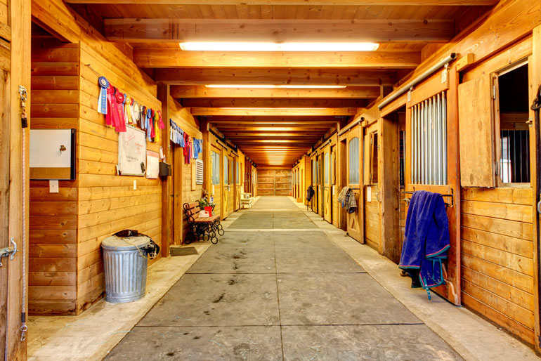 overview of horse stalls