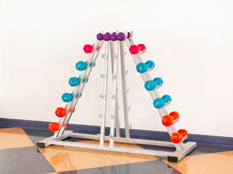 set of dumbbells on rack