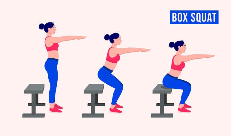woman performing Box Squats